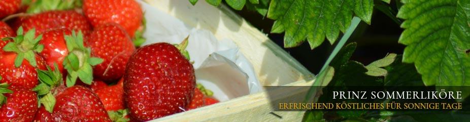 Prnz Sommerliköre - erfrischend köstliches für sonnige Tage