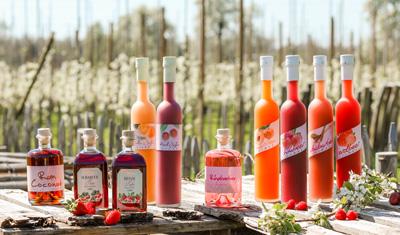 Erfrischende Sommerhits von Prinz mit feinsten Marillen, Kirschen, Rhabarber und Beeren